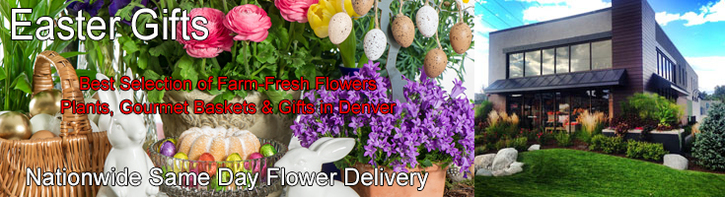 Easter Flowers & Gifts