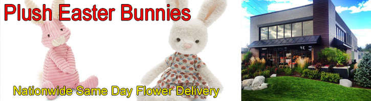 Easter Plush Bunnies & Jellycats