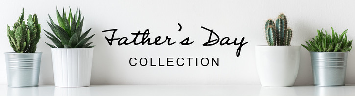 Father's Day Flowers & Gifts
