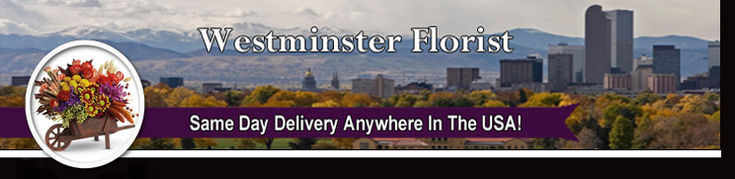 Westminster Colorado Florist