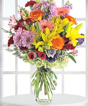 Denver Dazler, Florist Denver CO, Same Day Delivery