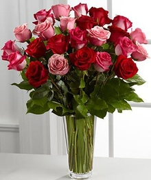 Gorgeous Red and PInk Roses
