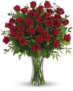 36 Red Roses - On Sale Today