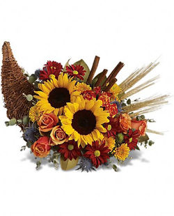decorative baskets dried flowers small baskets country basket.htm boulder flower delivery  flower delivery boulder  same day flower  boulder flower delivery  flower